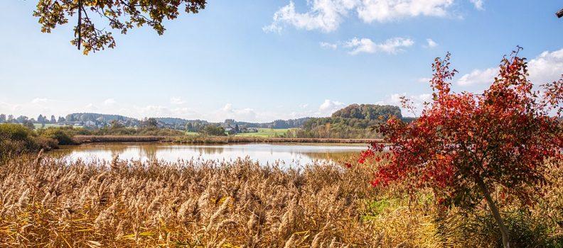 Herbst am Egglburger See